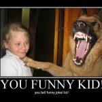 Funny Animal Memes - you funny kid
