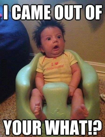 Baby Memes - i came out of