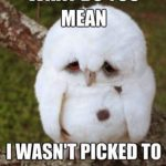 Funny Animal Memes - what do you mean