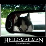 Animal Memes - hello mailman