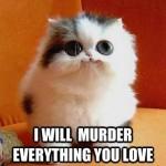 Funny Animal Memes - psycho kitty