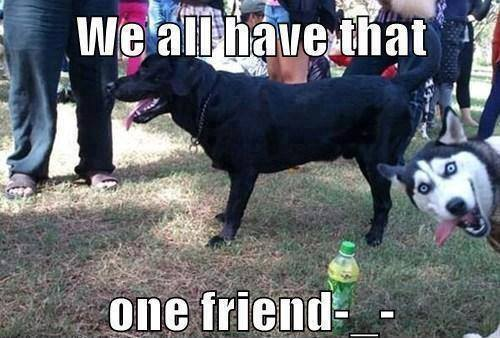 Funny Memes - we all have