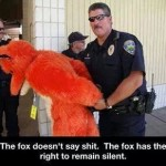 Funny Memes - what does the fox say