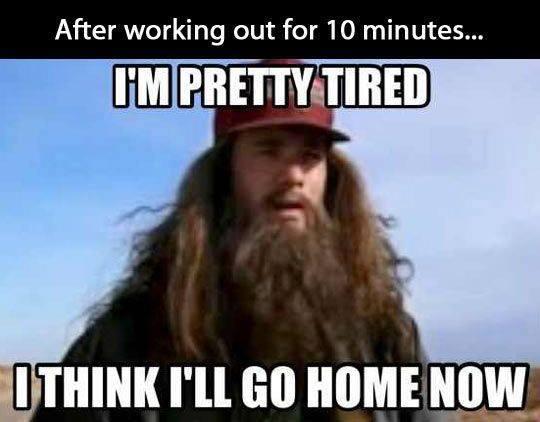Funny Animals Memes - im pretty tired