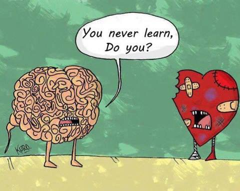 Funny Memes - you never learn