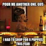 Animal Memes: christmas shopping