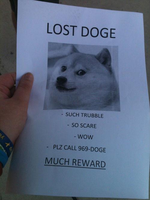 Dog Memes - doge meme 4