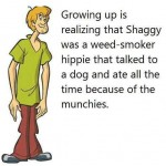 Funny Memes - shaggy was a hippie