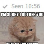 Funny Animals Memes - my friendship