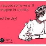 Funny Memes - Ecards - saved the day
