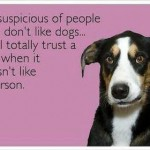 Funny Memes - Ecards - trust the dog