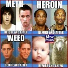 Funny Memes - drugs vs fox news