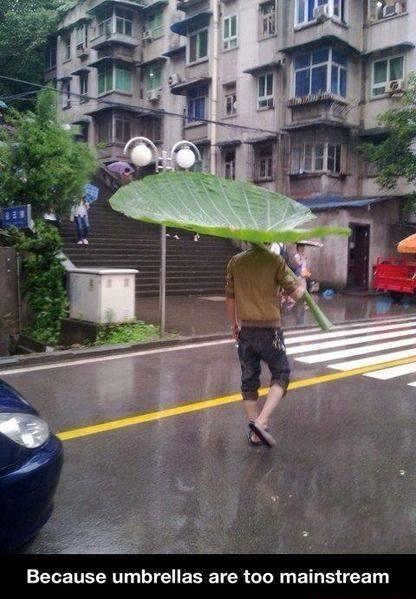 Funny Memes - screw umbrellas