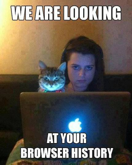 Funny Memes - your browser history