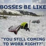 Funny Memes: bosses be like