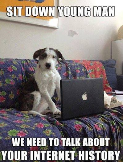 Animal Memes - concerned doggie
