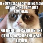 Funny Animal Memes - valentines day grumpy cat
