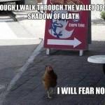 Funny Memes - fear no evil