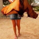 Animal Memes - giant bat