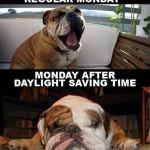Funny Memes - monday after daylight savings