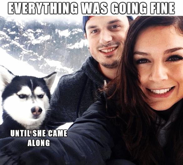 Funny Memes - until she came along
