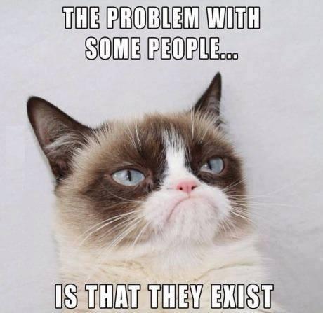 Funny Animal Memes - tumblr n4106aGBYH1r9m0ceo1 500