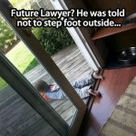 Funny Memes - Future Lawyer