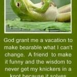 Funny Memes - My 3 Wishes