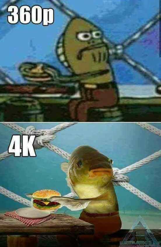 360P V.S 4K Meme